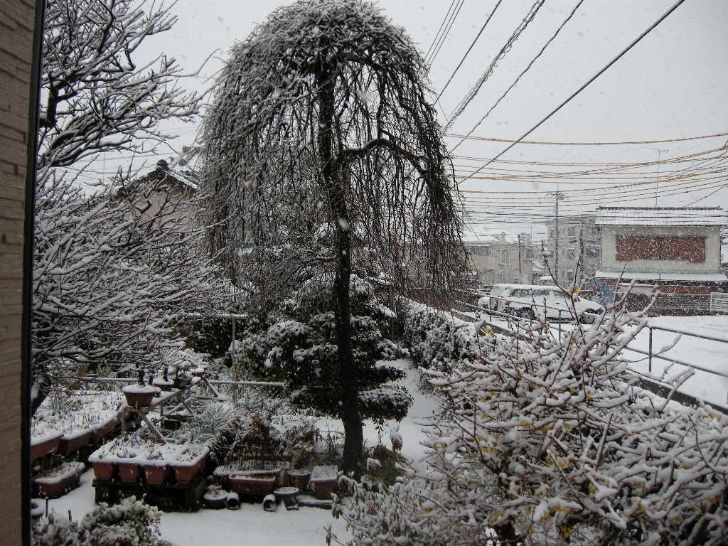 http://www.kimukimu-diy.com/blog/2013/01/14/DSCN3597.JPG